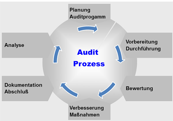 audit_prozess.jpg