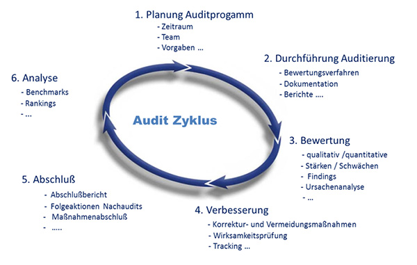 audit_zyklus.jpg